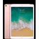 "iPad Pro 10,5"" Wi-Fi + Cellular 512 GB Rose Gold"