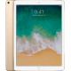 "iPad Pro 12,9"" Wi-Fi + Cellular 256 GB Gold"