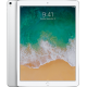 "iPad Pro 12,9"" Wi-Fi + Cellular 256 GB Silver"